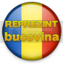 Reprezint Bucovina in Recensamantul Bloggerilor
